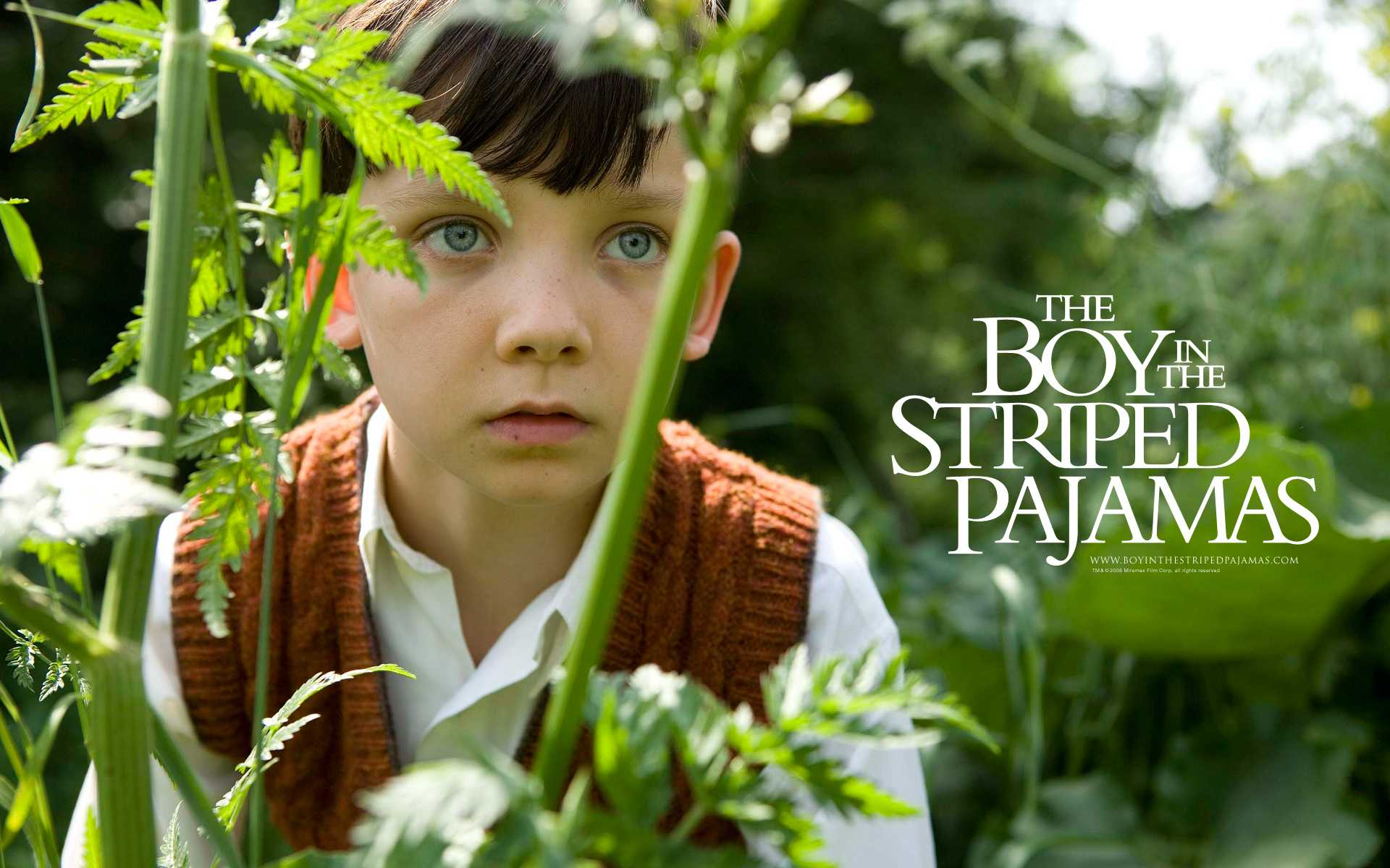 Netflix nightcap: The Boy in the Striped Pajamas : 2PF
