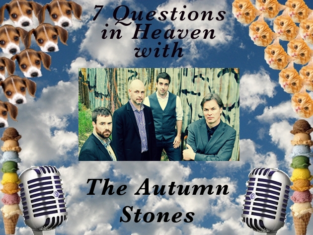 7 Questions Autumn Stones